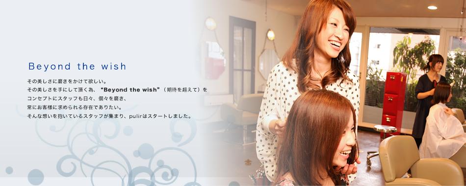 Hair MAKE pulir